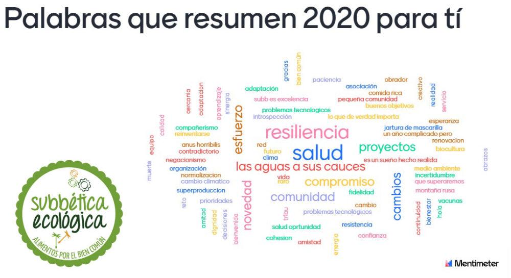 Nube de palabras que resumen el sentir de nuestra comunidad durante el año 2020